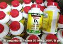 Tác dụng phụ của Vitamin D3 50mcg 2000IU là gì?-1